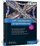 SAP-Schnittstellenprogrammierung: Programmierbeispiele zu RFC, BAPI, ALE, IDoc, OData, ABAP Push Channels und SOAP (SAP PRESS) - Michael Wegelin