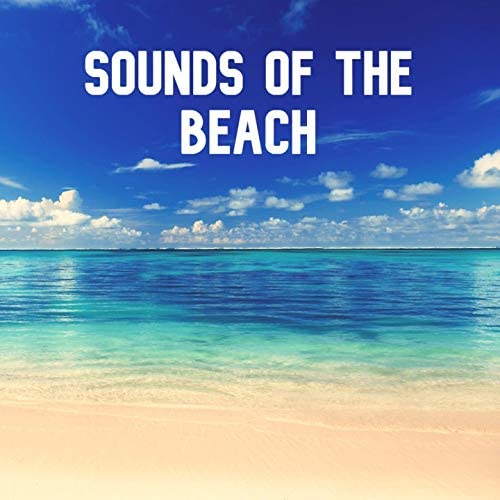 Sounds Of The Beach