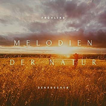 Melodien der Natur: Frühling Geräuschen zum Fantasiereise, Entspannung, Massagen
