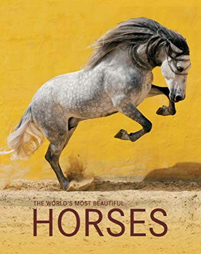 The World's Most Beautiful Horses / Die schönsten Pferde der Welt / Los caballos mas bellos del mundo (Spectacular Places)
