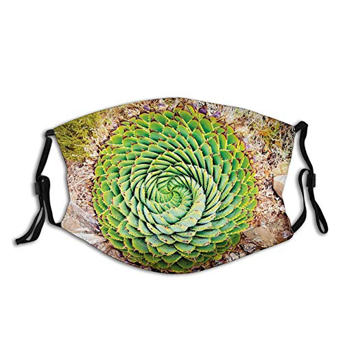 Comfortable Windproof mask, Plant, National Flower of Lesotho South of Africa Aloe Polyphylla Spinning Spiral Aloe Vera, Multicolor,Printed Facial decorations for adult