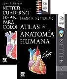 LOTE HANSEN - NETTER. Netter. Cuaderno de anatomía para colorear + Atlas de Anatomía Humana