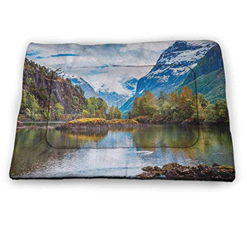 """Pet Crate Mat Dog Bed Nature Cooling Mat for Dogs & Cats Norway Mountain Range with Snowy Peaks by the Lake Fishing Nordic Northern Landscape for Kennels, Crates and Beds- Pets Multicolor (52""""x34"""")"""