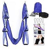 Hamaca de yoga, juego de columpio de yoga aéreo, ultra fuerte antigravedad yoga Hamaca/hendida/herramienta de inversión para gimnasio en casa Fitness (púrpura claro y púrpura oscuro)