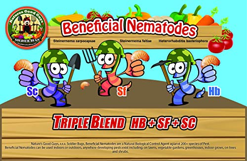 NaturesGoodGuys Beneficial Nematodes Triple Blend Pack HB+SC+SF - 50 Million