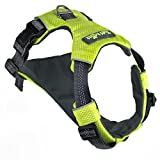 Tuff Mutt Running Harness