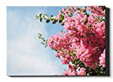 Decorative Wall Art Inthanin Flowers Or Queen Crape Myrtle Photo Print Canvas 12 X 16 Inch(30x40cm) Art Wall Decor for Kitchen Wall Artworks Pictures Hanging in The Living Or Bedroom Home