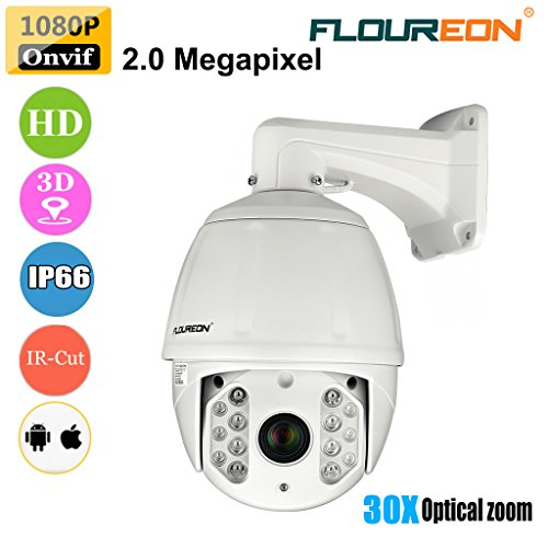 FLOUREON HD616 Dome Telecamera IP Camera 1080P 30X Zoom Pan/Tilt IR-Cut Impermeabile Visione Notturna Allarme Email