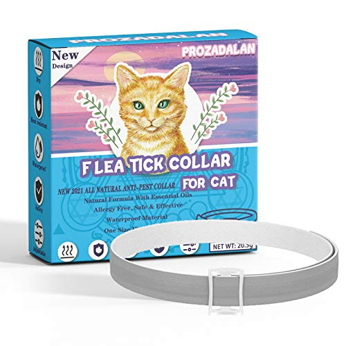 Collar Antiparasitario Gatos, 35cm Ajustable Collares Antipulgas para Gatos, 100% Naturales Antiparasitarios Gatos Collar, 8 Meses de Protección para Gatos, Repelen Eficazmente Piojos, Pulgas