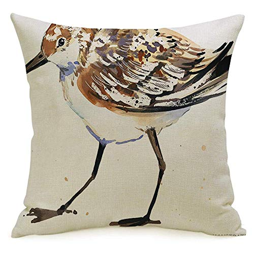 Decorative Linen Square Throw Pillow Cover Shore Sandpiper Water Bird Watercolor Animals Wildlife Sand Africa Asia Billed Asian Planet Baltic Modern Design Cushion Case for Car Bed 18 x 18 Inch