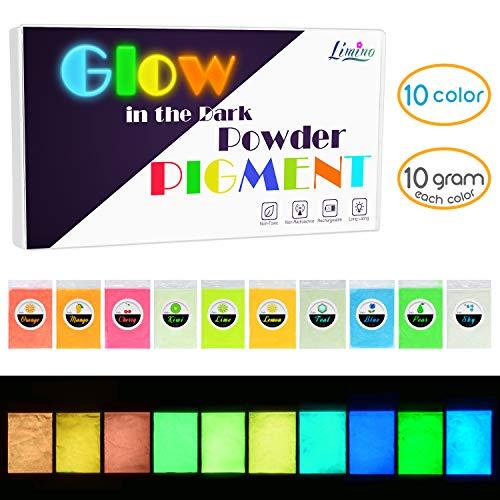Leuchtender Epoxidharz Farbe Pigment - 10 Farben Im Dunkeln Leuchtendes Pigmentpulver für Slime, Nagel - Epoxid UV Harz Farbpigment Leuchtpulver für Nail Art, Malen, Acrylfarbe und Basteln - je 10g