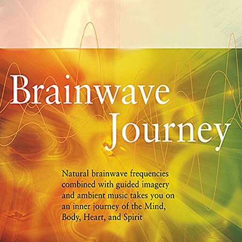 Brainwave Journey audiobook cover art
