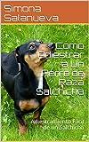 Cómo Adiestrar a Un Perro de Raza Salchicha: Adiestramiento Fácil de un Salchicha (Spanish Edition)