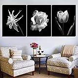 Imágenes en Blanco y Negro Decoración de impresión Sala de Estar Arte de la Pared Flor de Rosa Pintura en Lienzo Cartel de Moda Arte 3 Piezas 50x70cm / 19.7'x27.6 Sin Marco