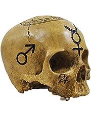 Doodshoofd Witchcraft Skull - decoratieve figuur
