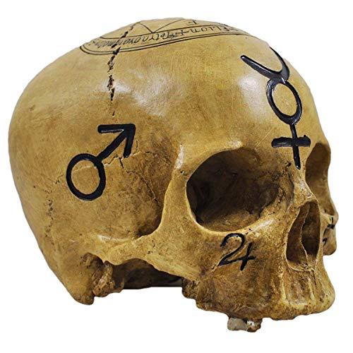 Totenkopf Witchcraft Skull - Deko Figur