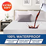 Abakan Queen Mattress Protector Premium Waterproof Super Soft Breathable Noiseless Fitted Mattress Pad Cover Luxury Elastic Deep Pocket Vinyl Free Bed Cover 60x80 Inch