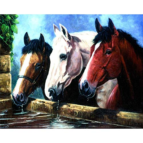 Diamond Painting Embroidery Paintings Pictures Arts Craft for Home Wall Decor Three Horses 15.7x11.8 in By Bemaystar