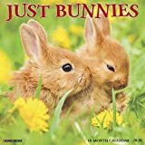 Just Bunnies 2020 Wall Calendar