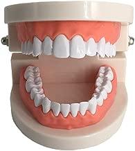 dental display