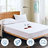 Full Mattress Protector Waterproof Mattress Cover Washable Soft Cotton Terry Noiseless Bed Covers for Kids Pets Adults Fitted Sheet Deep Pocket 54'x75'