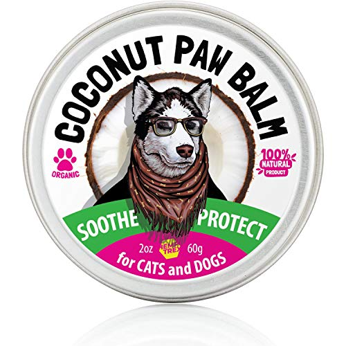 HEMPTREX Dog Paw Balm Soother & Moisturizer - 2 oz - with Natural Shea Butter, Coconut Oil, Beeswax - Heals and Repairs Cracked Dog Paws, Snout & Elbows - Snow & Dry Weather Protection Ointment