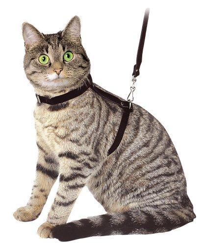 Kerbl Arnés para gatos con correa 120cm, negro, de ante