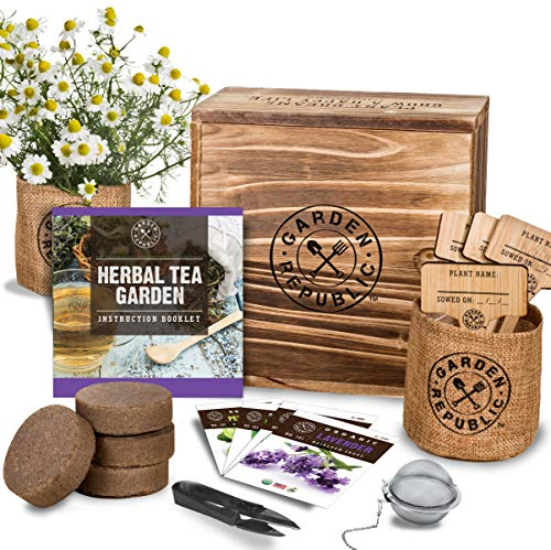 Top 10 garden kits for adults for 2020