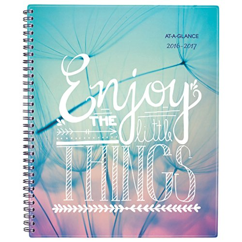 "AT-A-GLANCE 183-905A-17 Academic Year Weekly/Monthly Planner/Appointment Book, July 2016 - June 2017, 8-1/2""x11"", Design Selected for You May Vary (183-905A)"