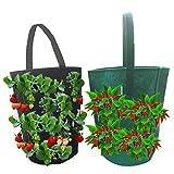 joyce hugh - vaso da fiori da appendere, per coltivare il peperoncino, per coltivare fragole, da appendere al muro, giardino, per interni ed esterni verde
