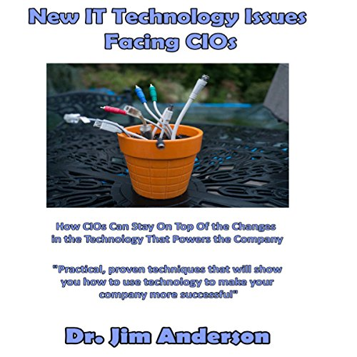 New IT Technology Issues Facing CIOs audiobook cover art