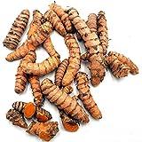 Kurkuma Bio 300 g: Kurkumaknollen frisch aus Peru | frische Kurkumawurzel | zur Herstellung von Kurkum Pulver, Goldene Milch | frischer Curcuma ungezuckert | Kurkuma echt | Fresh Tumeric