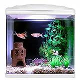 sararui Pecera Creative Desktop Fish Tank Pequeño Tanque Escritorio Desktop Aquarium Goldfish Decoración Fish Tank Glass Free Water Change Decoración del hogar Pecera Pequeña