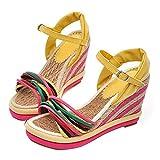 Women's Ankle Strap Platform Wedge Sandals Colorful Rainbow Open Toe High Heel Espadrilles Sandals