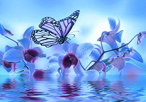 wandmotiv24 Fototapete Blau Orchidee XXL 400 x 280 cm - 8 Teile Fototapeten, Wandbild, Motivtapeten, Vlies-Tapeten Blumen, Wasser, Schmetterling M3743