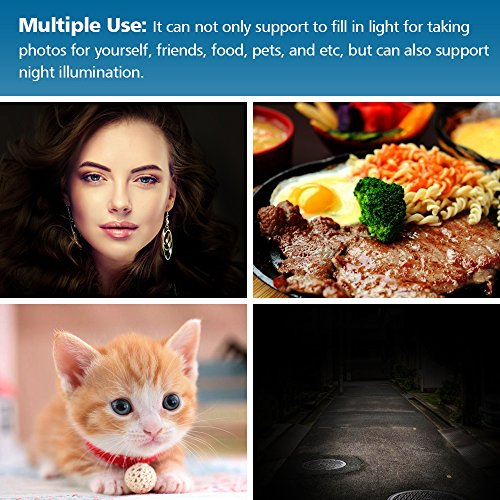 Selfie Light Rechargeable for iPhone, Ring Light with 9-Level Adjustable Brightness for Laptop, Clip on Mini Cell Phone LED Light, Portable Battery Operated Light, USB Powered Photo Light for Video