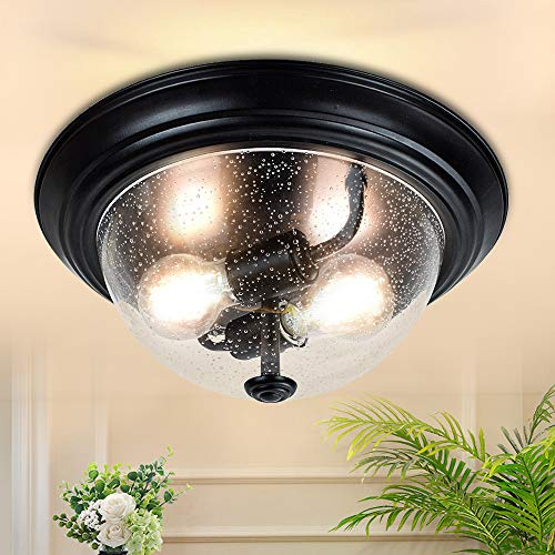 DLLT Seeded Glass Ceiling Light, 13 Inch 2-Light Farmhouse Semi Flush Mount Lighting Fixture, Round Downlight with Clear Glass Shade for Entryway, Hallway, Bedroom, Porch, Kitchen, Living Room
