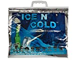 ICE N COLD Insulated Cooler Bag PACK OF TWO Lightweight...