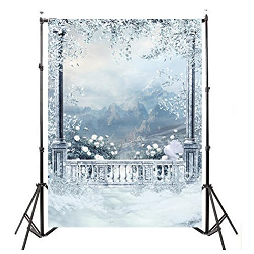 Photo Background Backdrop Prop Window Snow Landscape Photography Studio Backdrop Background 3x5FT