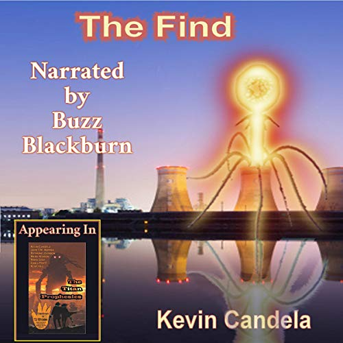 The Find cover art