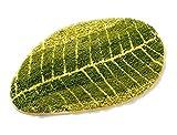 Eazyhurry Árbol Leaf patrón Oval Absorbente Antideslizante al Aire Libre Floor Mat Microfibra Entrada Felpudo Tejido a Mano decoración del hogar Alfombra Alfombra, Tree Leaf, 18' X 47'