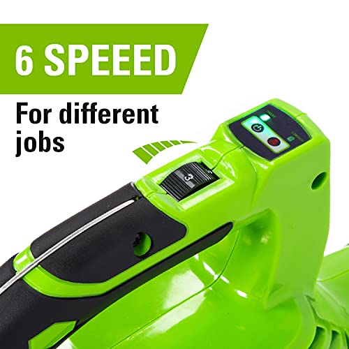 Greenworks Tools Cordless Leaf Blower and Vacuum 2-in-1 GD24X2BVK4X (Li-Ion 2x 24V 321km/h Air Speed Collection Bag Speed Regulation Powerful Brushless Motor Incl. 2 Batteries 4Ah & Charger)