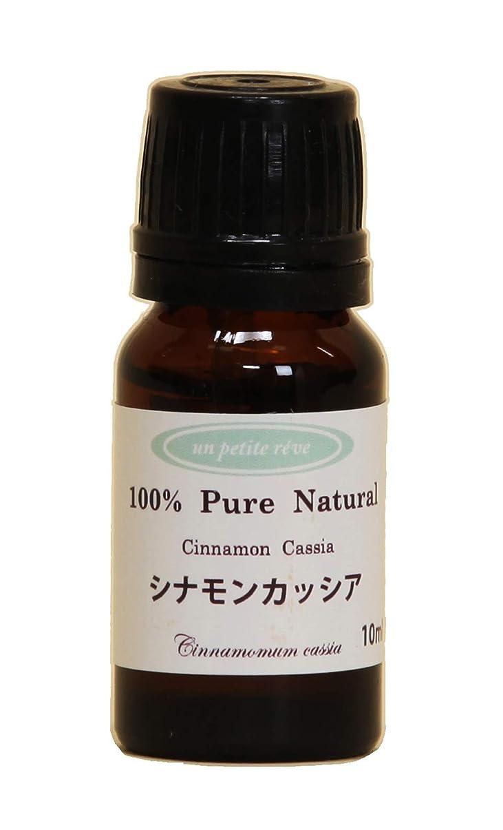 化粧ブレーキタクトシナモンカッシア 10ml 100%天然アロマエッセンシャルオイル(精油)