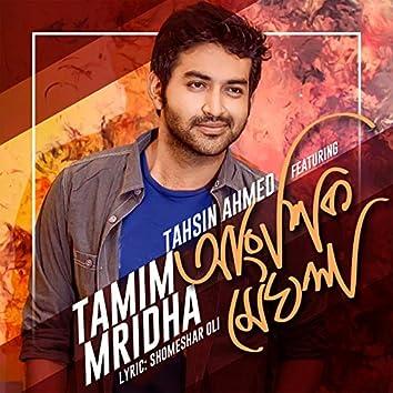 Angshik Meghla (feat. Tahsin Ahmed)