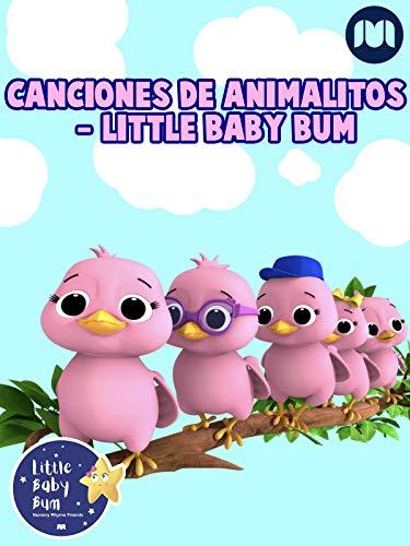 Canciones de Animalitos - Little Baby Bum