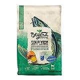 Purina Beyond Grain Free, Natural Dry Cat Food, Simply Grain Free Ocean Whitefish & Egg Recipe - 3 lb. Bag