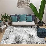 La Alfombra Alfombra habitación Matrimonio Alfombra Suave de Estilo de Pintura de Tinta Abstracta Gris y Blanca para Sala de Estar alfombras Pelo Corto Salon Alfombra Chimenea ignifuga 120*200cm