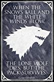 Game of Thrones Poster Lone Wolf (61cm x 91,5cm) +
