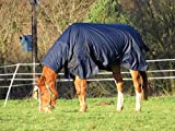 Turners Heavyweight Combo 350g Fill Waterproof Winter Turnout Rug with Neck 600d Ripstop