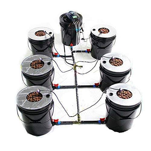 CNCEST Sistema Cultivo Hidropónico con Burbujeador Aire para Macetero de Jardín Interior Planta con Bomba